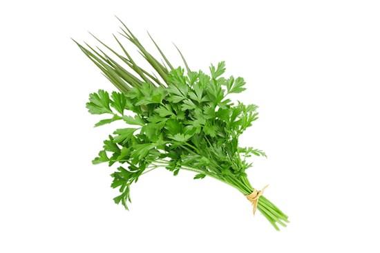 cheiro verde margo alimentos